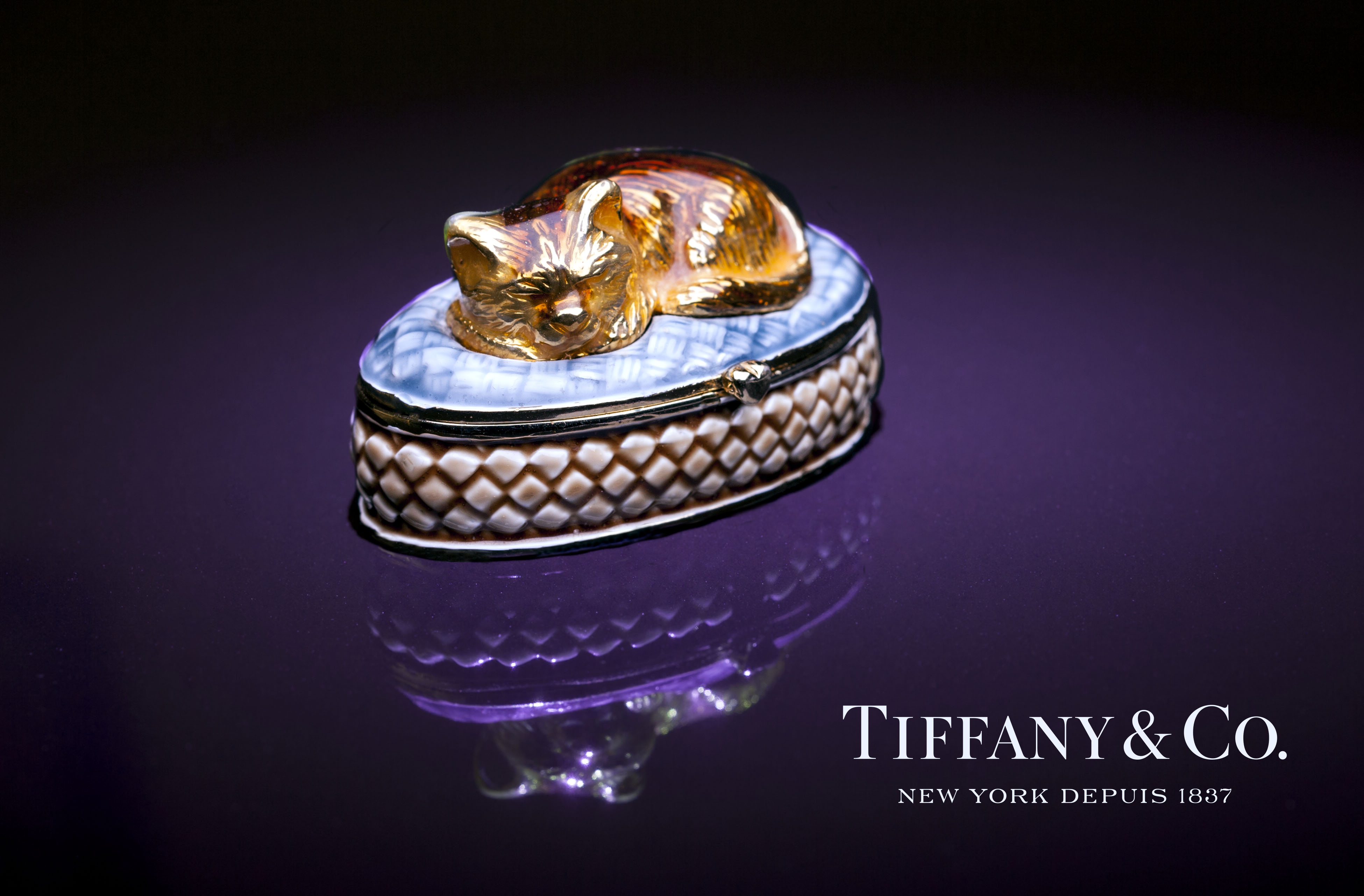 Tiffanys Cat